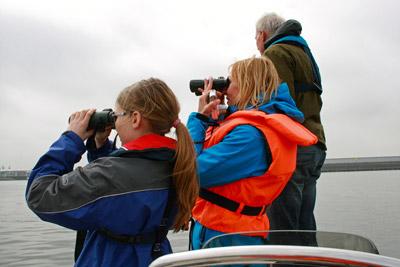 Schweinswalsuche in der Elbe: mit dabei die interessierte junge Journalistin Rebecca Sch. (15 Jahre) und die GRD-Biologin Denise Wenger, beide halten von einem Zodiac aus stehend mit Ferngläsern Ausschau nach Schweinswalen