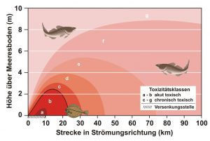 Schon normale Durchrostung erzeugt hochgiftige Kontaminationsfahnen (Beispiel Kampfstoffmunition bei Bornholm)