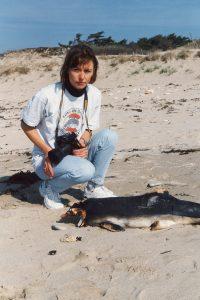 Denise Wenger, Französiche Atlantikküste 1997: Über 500 Delfine und Schweinswale wurdennach einem Sturm tot an die Küste geschwemmt zusammenmit unzähligen Fischernetzresten