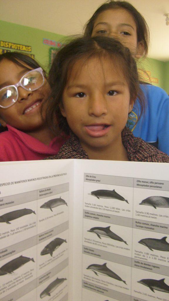 ACOREMA Poster mit Schülern der Schule Las Antillas: Alle Wale Perus